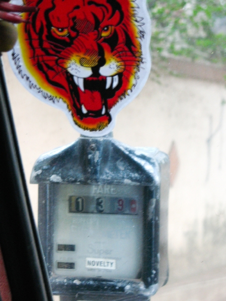 meter and tiger